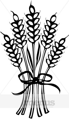 Wheat Sheath Clipart Holiday Clipart Archive