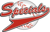 Red Specials Basball Pennant Word Art