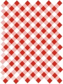 Red Gingham Checks