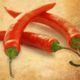Chili Pepper Email Graphic