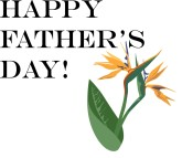 Happy Father's Day with Birds of Paradise