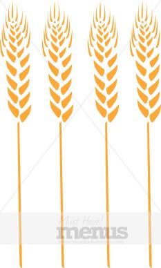 Wheat Clip Art Thanksgiving Menu Images