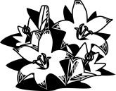 Easter Lilies Clipart