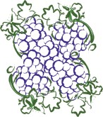 Grape Bunch Clipart