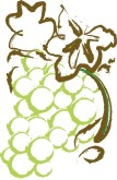 White Grapes Clipart
