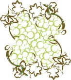 Wine Grapes Clipart