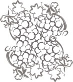 Grape Harvest Clipart
